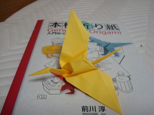 Origami-34.jpg