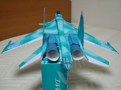 Su-37_terminator_2_back.jpg