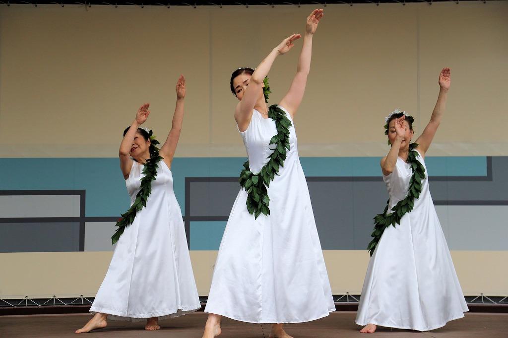 tanabata hula3-14