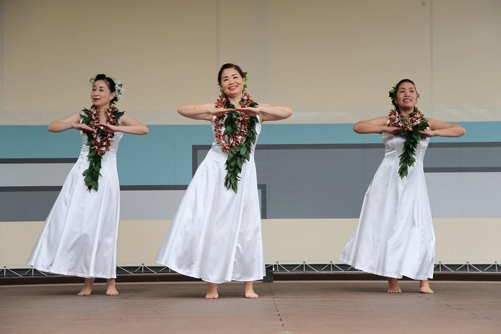 tanabata hula4-19