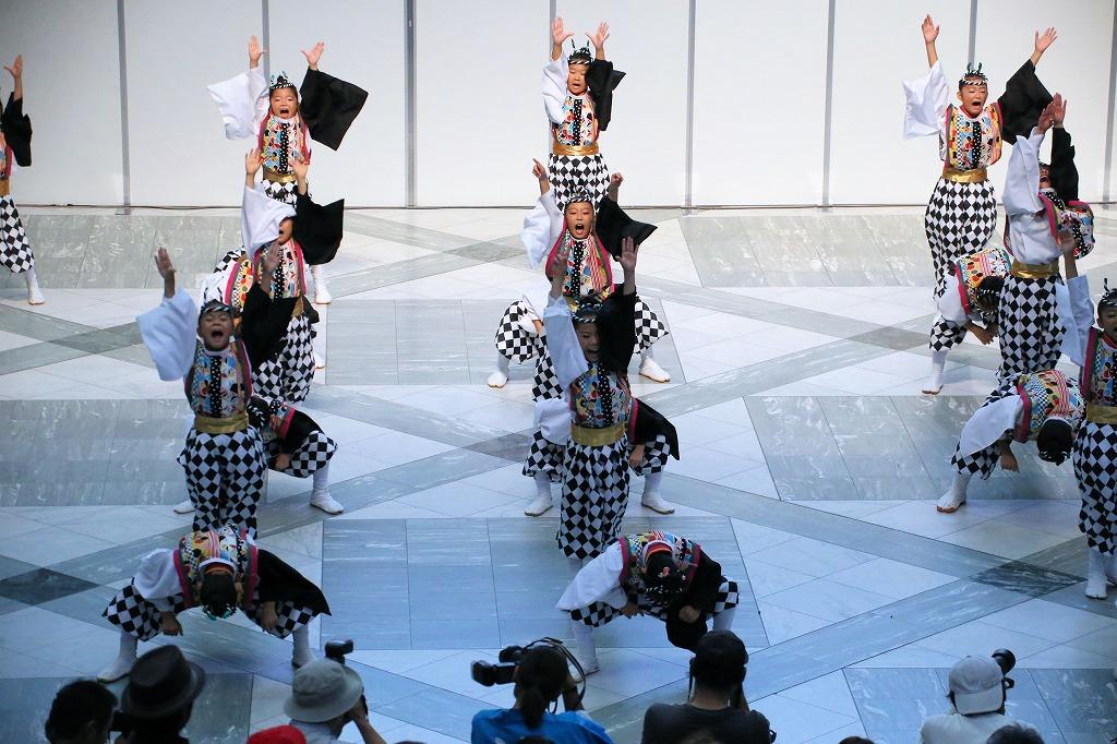 sakura koiya twin 32