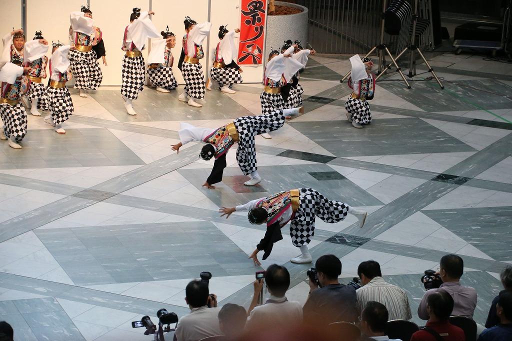 sakura koiya twin 52