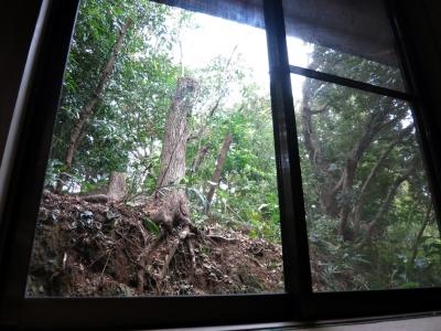 160405-62=立木伐採完了fm枕流庵和室