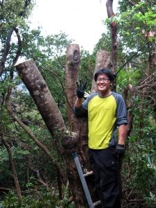 160408-18=野本広伸,立木伐採完了 a浴室外