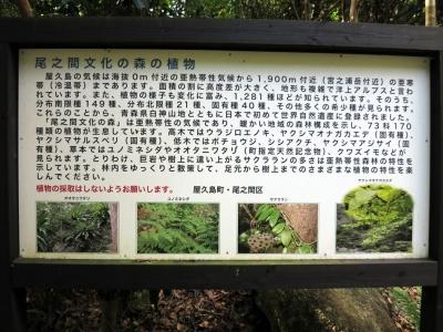 161014-301=ONA文化の森の植物案内板