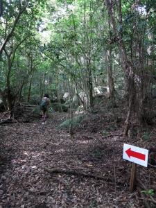 161014-303=水戸幸恵,歩き aONA文化の森
