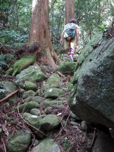 161014-306=水戸幸恵,歩き aONA文化の森