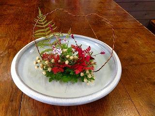 フウロソウの青葉と紅葉・ヨメナの花・アカマンマ、ゲンノショウコ、シダ、山形