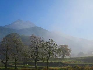 湯布院盆地の朝霧(11・4)