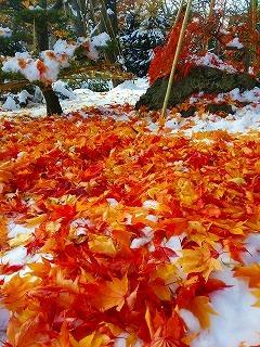 札幌市付近、雪と紅葉