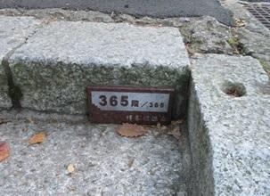 20161106 (43)