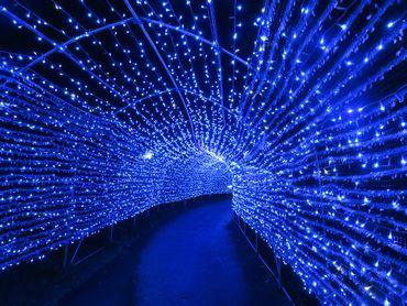 IMG_4208光のトンネル