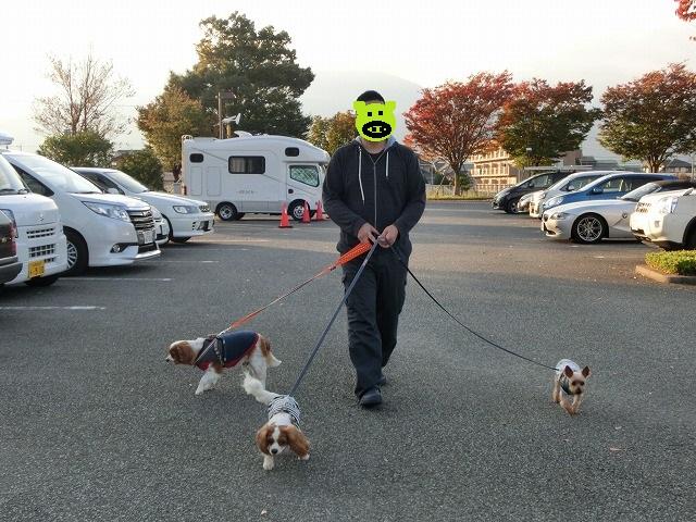 無計画・富士山の旅2016・秋の終わり 026