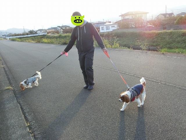 無計画・富士山の旅2016・秋の終わり 034