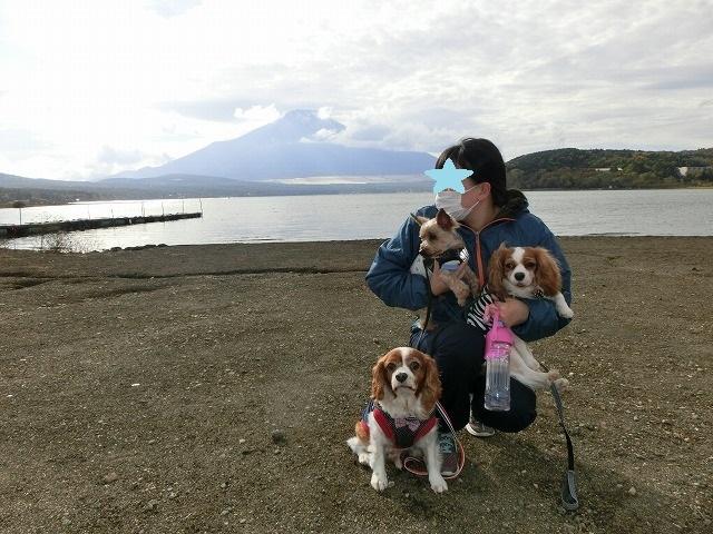 無計画・富士山の旅2016・秋の終わり 094