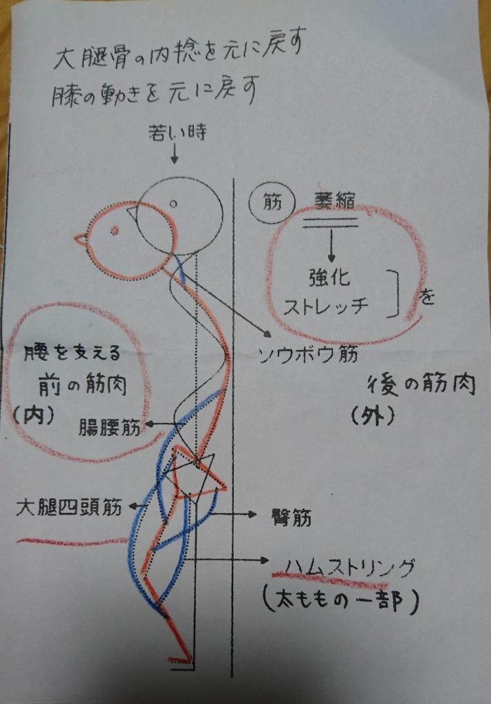 DSC_1256.jpg