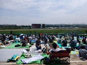 P5293129 201605東京競馬場