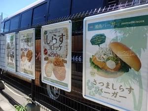P7304205江の島さんぽ~シラス丼