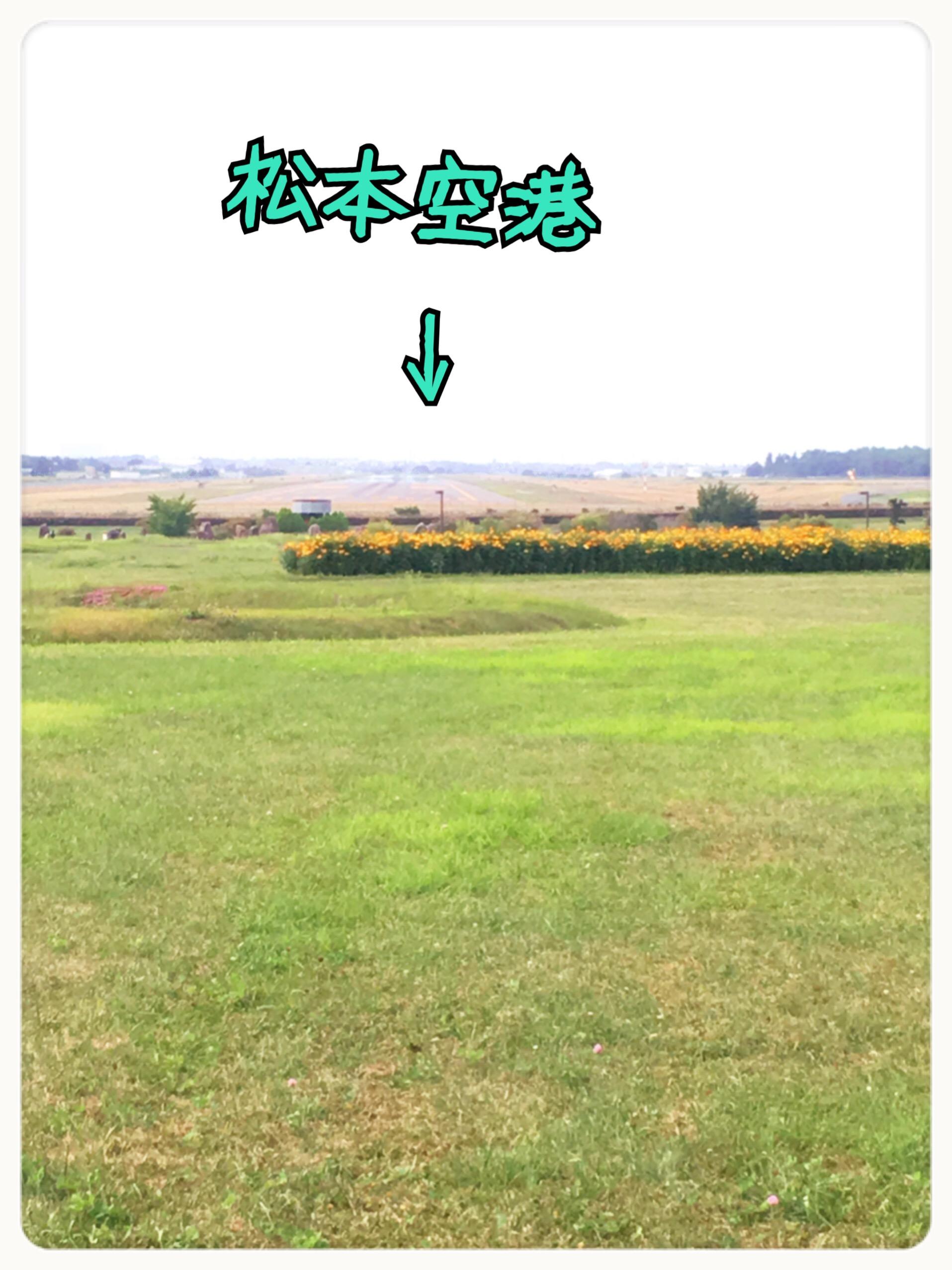 松本空港が見える