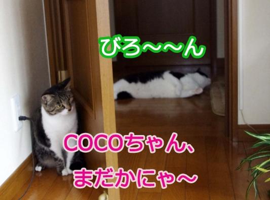 2012 07 07_5936_edited-1