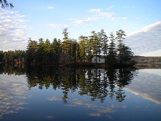 320px-Loon_Island,_Forest_Lake,_Gray,_Maine