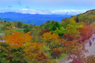 茶臼山2016-1