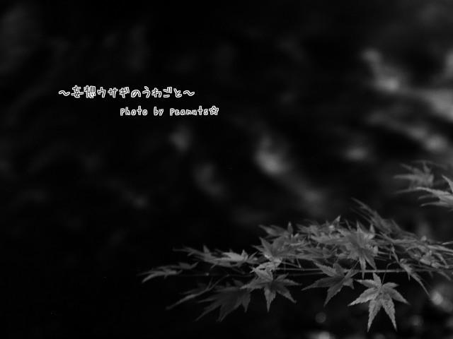 モノクロ黒石