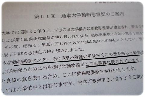 慰霊祭 (2)