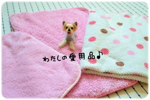 久しぶりの涙 (3)