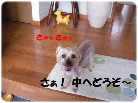 オトナになれない (2)