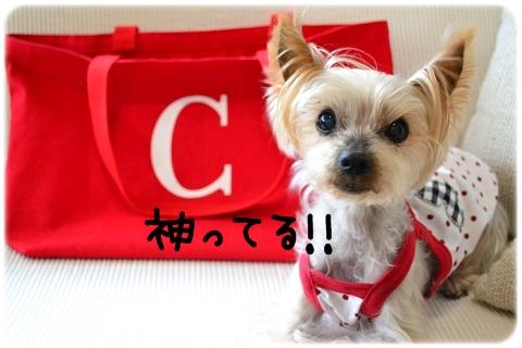 優勝おめ! (2)