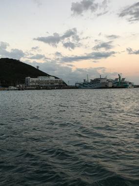 伊良湖 ヒラメ 釣り 豊川 花屋 花夢