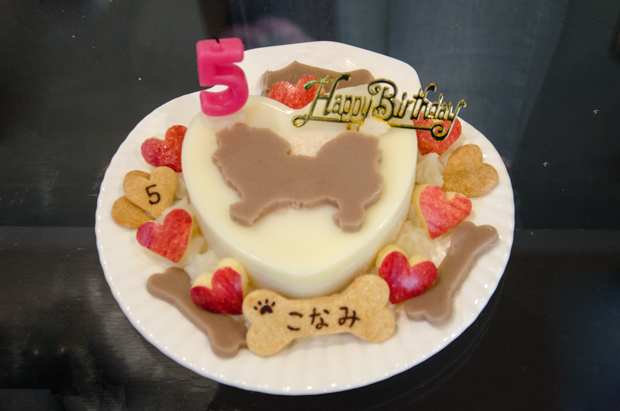 ⑥お誕生ケーキ