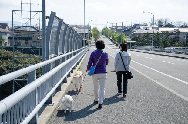 ③橋を渡る