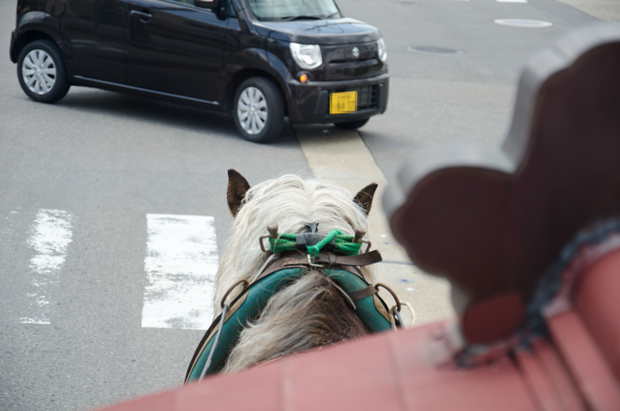 ⑯お馬さん