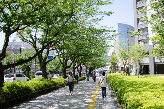 ①新緑の散歩道