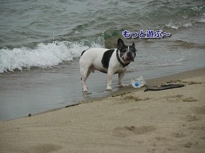 砂丘3 (7)