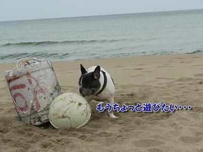 鳥取4 (4)