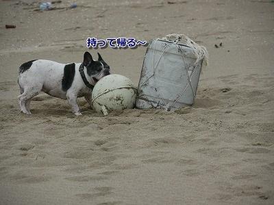 砂丘5 (3)