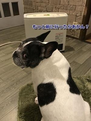ぬくぬく (1)