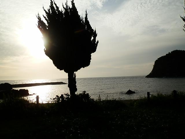PA051599.jpg