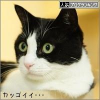 dai20161107_banner.jpg