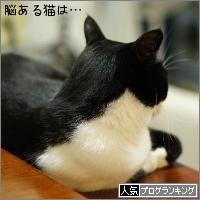 dai20161108_banner.jpg