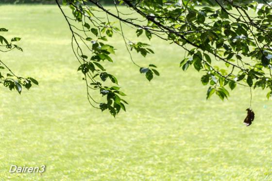 深谷グリーンパーク