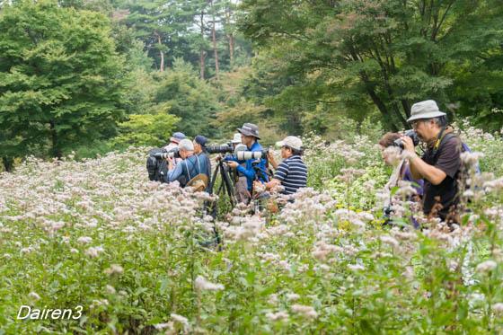 集まったカメラマン