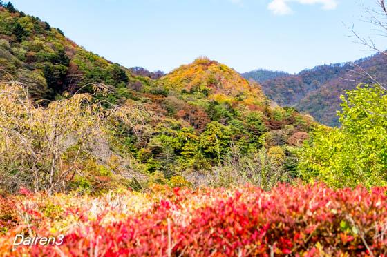 奥四万湖周辺の紅葉