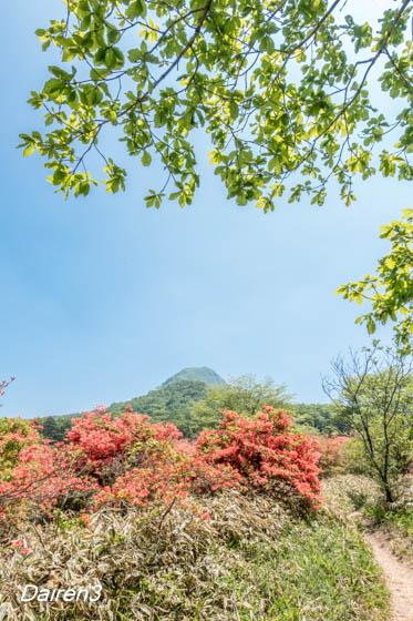ゆうすげの道 相馬山