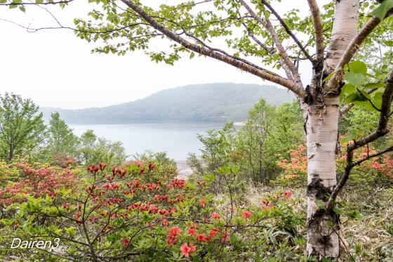 赤城小沼湖畔