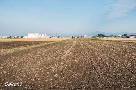 田起しが進む
