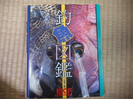 DSCN1267_01.jpg